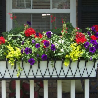 Decorate Your Balcony With Flowers